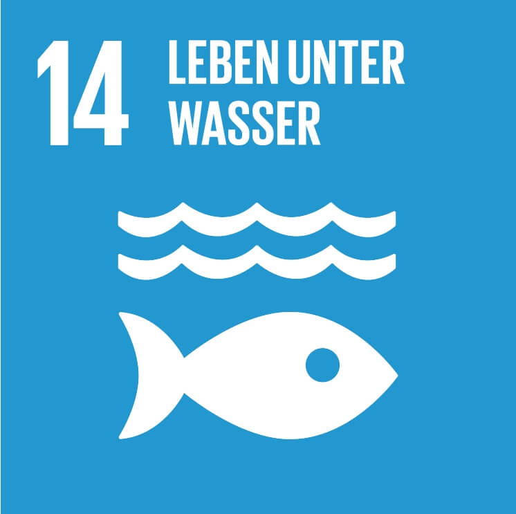 Ozeane, Meere und Meeresressourcen im Sinne nachhaltiger Entwicklung erhalten und nachhaltig nutzen - IAHV unterstützt Naturschutzinitiativen wie die Renaturierung von Flüssen.