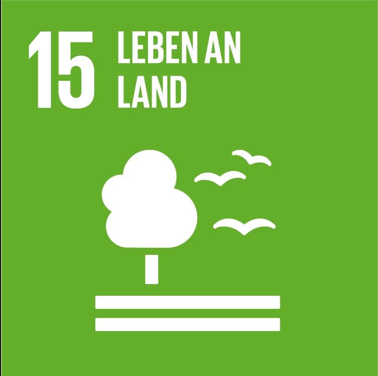 Landökosysteme schützen, wiederherstellen und ihre nachhaltige Nutzung fördern, Wälder nachhaltig bewirtschaften, Wüstenbildung bekämpfen, Bodendegradation beenden und umkehren und dem Verlust der biologischen Vielfalt ein Ende setzen - IAHV engagiert sich für den Schutz und die Förderung des Lebens an Land.