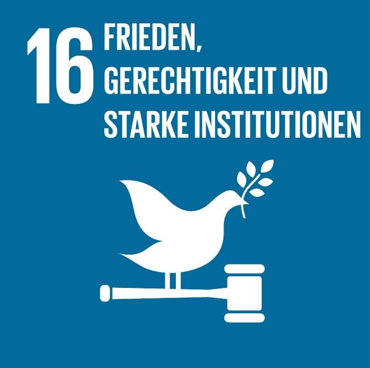 Friedliche und inklusive Gesellschaften für eine nachhaltige Entwicklung fördern, allen Menschen Zugang zur Justiz ermöglichen und leistungsfähige, rechenschaftspflichtige und inklusive Institutionen auf allen Ebenen aufbauen - RISE: Refugee Integration and Self-Empowerment und HRE: Health, Resilience and Empowerment Programme von IAHV