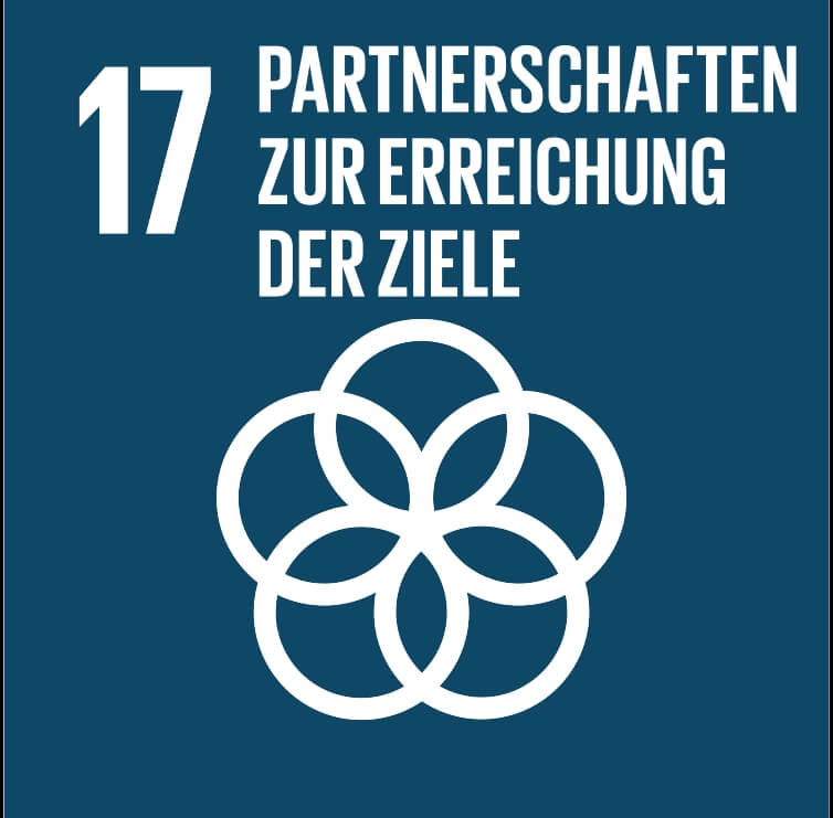 die Globale Partnerschaft für nachhaltige Entwicklung mit  neuem Leben erfüllen - IAHV unterhält Multi-Stakeholder-Partnerschaften mit Gemeinden, dem Privatsektor, zivilgesellschaftlichen Organisationen, UN-Einrichtungen und Regierungen, um die Umsetzung der SDGs zu unterstützen.
